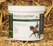Muscle Support 800g